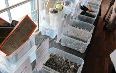 Už išrūšiuotas atliekas grės prizai ir pinigai