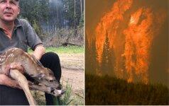 Didvyriškas poelgis: miško gaisre išgelbėtas elniukas