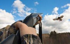 Visai nejuokinga: vertingiausi Lietuvos paukščiai gali tapti sočiais pietumis
