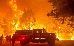 Kalifornijoje siautėjantis gaisras verčia evakuotis žmones