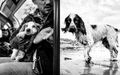 Keliaudamas aplink pasaulį fotografuoja šunis: kiekviena nuotrauka unikali