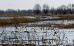 Kaip vertinate Europos vandenų apsaugos planą?