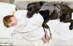 Ištikimas šuo nepaliko savo mažojo draugo net ligoninėje