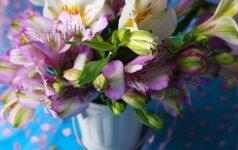 Kaip ilgiau išlaikyti nuskintas gėles