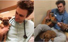 Kalytė labai bijojo operacijos: veterinaras ją nuramino į rankas paėmęs gitarą