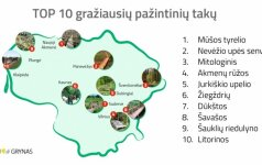 Top 10 gražiausių pažintinių takų Lietuvoje