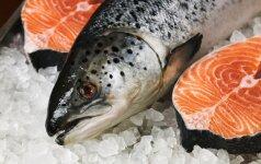 Nemaloni tiesa apie lašišą: maža gudrybė, kuri žuvį nudažo oranžine spalva