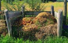Kaip išsirinkti komposterį sodybai?