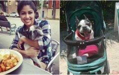 Belaukdamas meilės vienišas šuo paseno: dabar jo gyvenimas visai kitoks