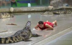 Tailande turistai ir vietiniai atrado krokodilieną