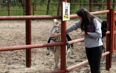 Lietuvos zoologijos sodas kviečia švęsti Pasaulinę gyvūnijos dieną