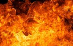 Pranešta, kad degančiame name gali būti žmonių