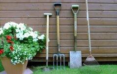 Pirmieji žingsniai sode: įrankių pasirinkimas