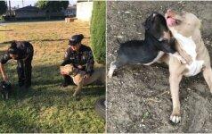 Pareigūnai sulaukė neįprasto iškvietimo: jų dėmesio sulaukė paršelis ir šuo