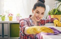 Kaip tvarkyti namus, kad jie dvelktų pavasariu