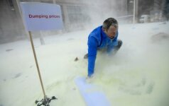Lietuvos ir kitų Europos šalių pieno gamintojai Briuselyje išpylė 5 tonas pieno miltų