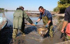 Kauno marių žvejus verslininkus išvijo, dabar nori parsivilioti