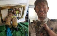 Kamine įstrigusi katytė sukėlė visus ant kojų: po kelių dienų vėl atsidūrė laisvėje