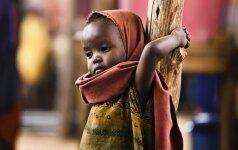 Kas išgelbės pasaulį nuo bado: sintetinis maistas ar genetika?