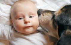 Turite tai pamatyti: kaip šuo pasirūpina vaiku prieš miegą