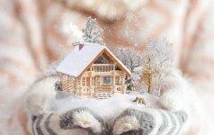 Ekspertas pataria: kodėl verta dairytis namo žiemą?