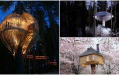 Įspūdingiausi nameliai medyje: juose gyventi norėtų daugelis