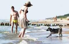 Šunų augintojų prie vandens tyko baudos: atsikvėpti galima tik viename paplūdimyje