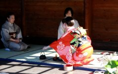 Rugsėjį Alytus pasitiks pasipuošęs kimono
