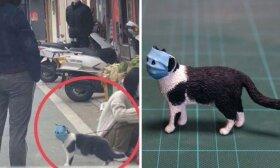 Japonas juoką keliančių nuotraukų herojus paverčia internetą užkariavusiais meno kūriniais