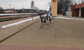 Ignalinos geležinkelio stotyje svarstoma įamžinti Vytauto Šerėno atminimą