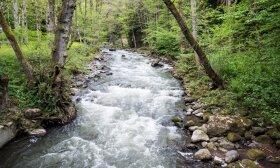 Mineralinio vandens parkas Boržomyje