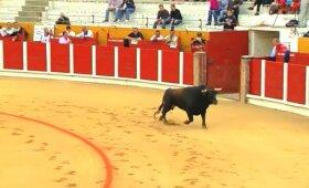 Dėl koridos nesutariantys ispanai: kilni tradicija ar žiaurus elgesys su gyvūnais