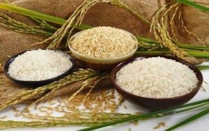 Ryžių dieta – išeitis, norint greitai numesti svorio. Receptai!