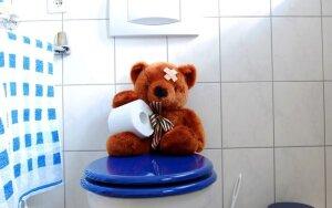8 kasdien naudojami daiktai, kurie yra purvinesni už tualetą