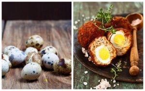 Putpelių kiaušiniai kailiniuose