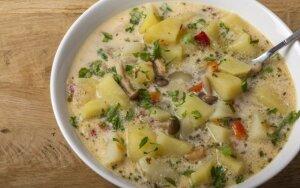 Sūrio sriuba su pievagrybiais