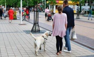 Poilsiautojai su šunimis Palangoje