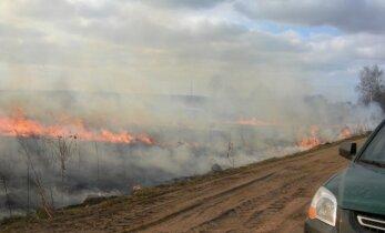 Įvardijo pažeidimą, kuriam aplinkosaugininkai dabar skirs daugiausia dėmesio