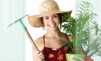 Augalai pagal Zodiaką - kuriuos išsirinkti, kad taptų teigiamos energijos šaltiniu