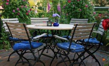 Augalai prie terasos – specialistų patarimai