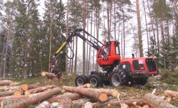 Trakų urėdijai priklausančiame miške kertamas miškas.