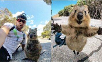Mielas gyvūnas nusprendė sekti keliaujantį vyrą