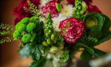 10 patarimų, kaip ilgiau išlaikyti pamerktas gėles