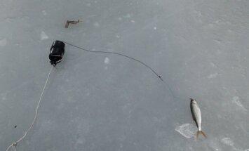 Konfiskuota žvejybos priemonė