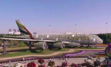 Dubajaus stebuklų sode – rekordinio dydžio gėlių instaliacija