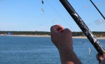 Žvejyba Baltijos jūroje