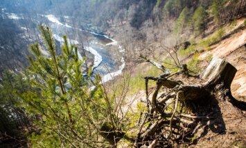 Minima Žemės diena: išsaugoti švarų orą, vandenį, dirvožemį, gyvąją gamtą