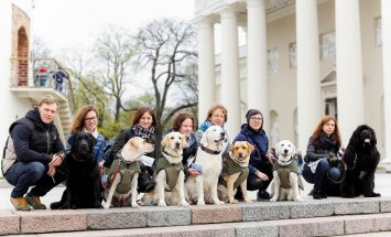 Terapiniai šunys