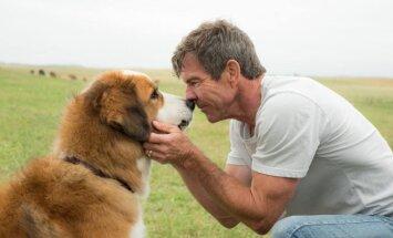 Kadras iš filmo Šuns tikslas