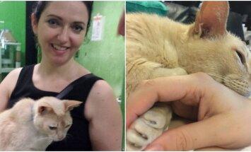 Sarah Dempsey ir jos katinas Jamie